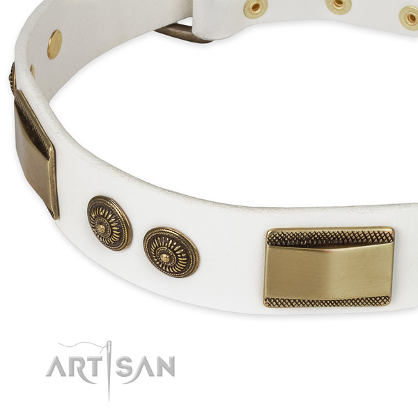 Durable adornments on full grain natural leather dog collar for your canine