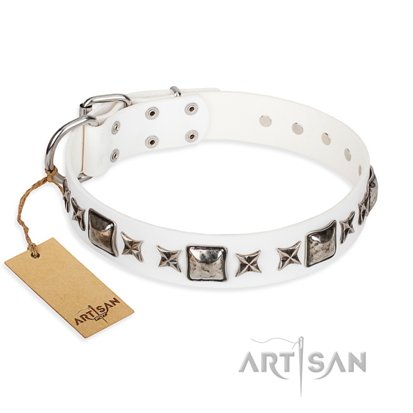 Fancy walking dog collar of best quality leather with embellishments