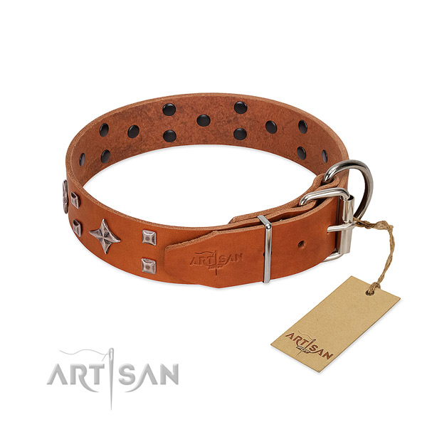 Exquisite full grain natural leather collar for your four-legged friend walking