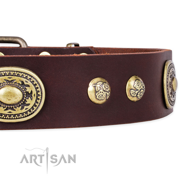 Fashionable full grain genuine leather collar for your stylish pet