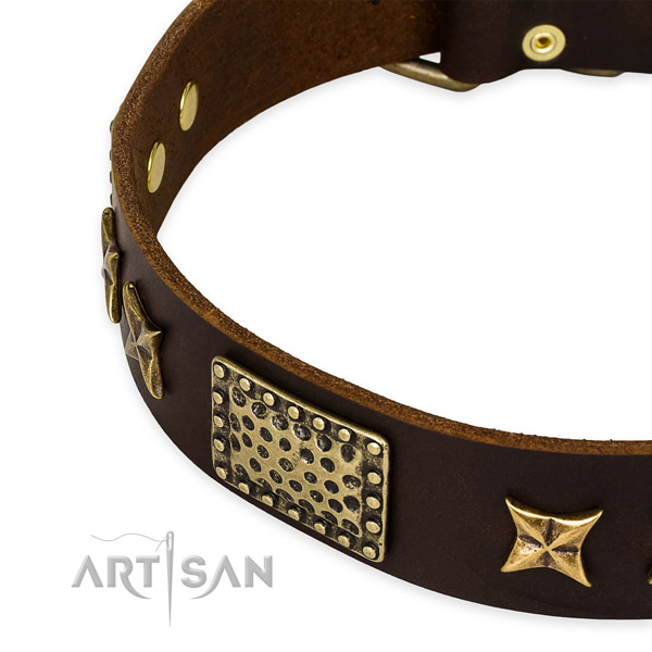 Full grain leather collar with rust-proof buckle for your attractive canine