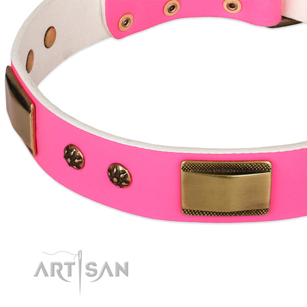 Rust-proof studs on full grain natural leather dog collar for your doggie