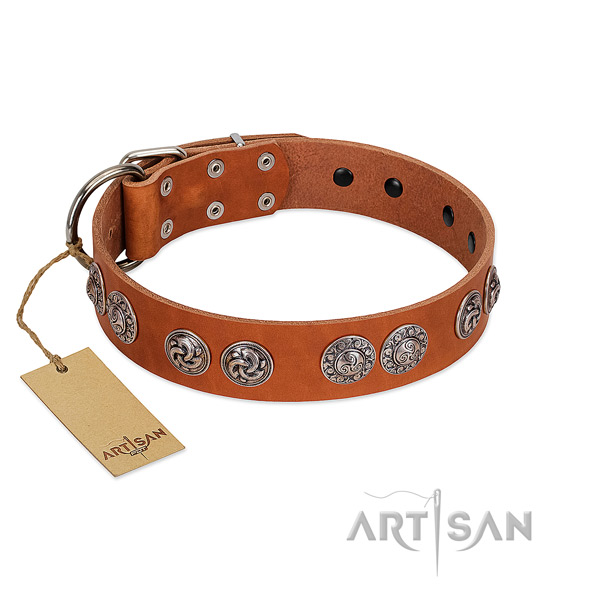 Awesome full grain genuine leather collar for your dog everyday walking