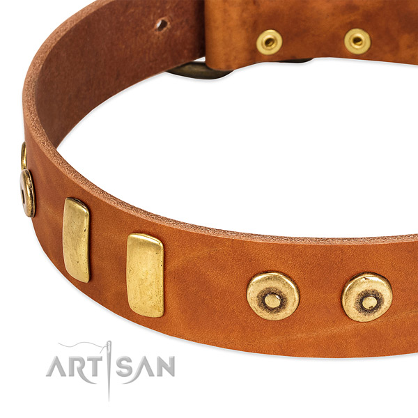 Soft to touch full grain genuine leather collar with incredible decorations for your dog