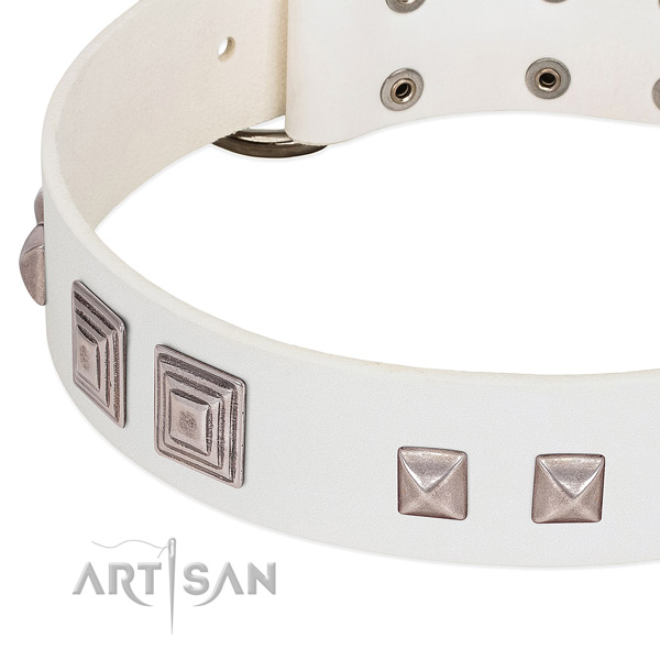Leather dog collar with durable fittings