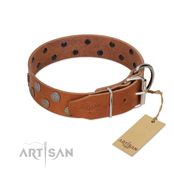 Strong fittings on leather dog collar for everyday walking