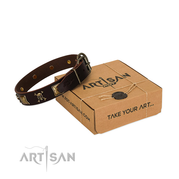 Top notch full grain genuine leather dog collar with stylish embellishments