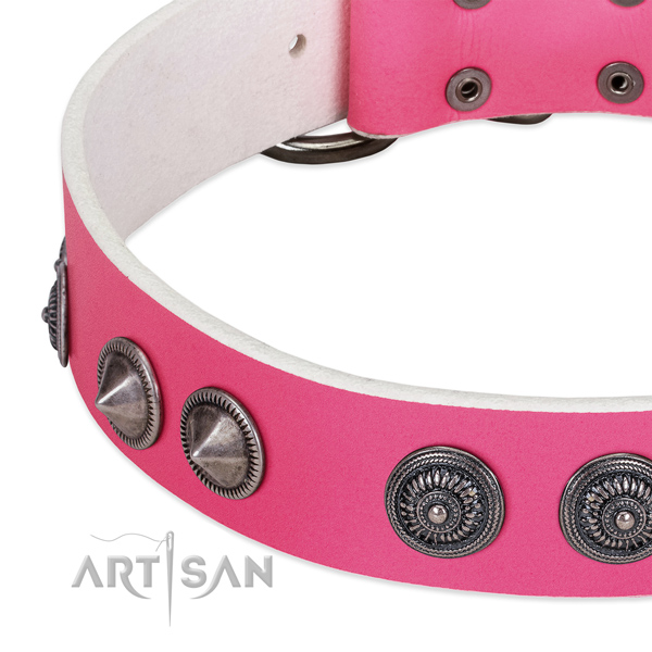 Stylish design full grain leather collar with adornments for your four-legged friend