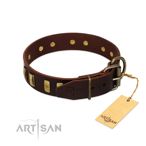Leather dog collar with corrosion proof traditional buckle for walking