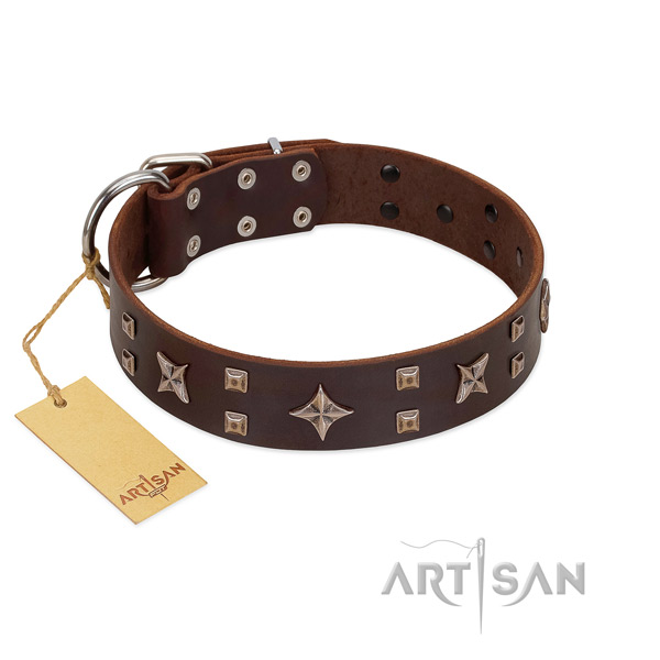 Unique full grain leather dog collar for walking your pet