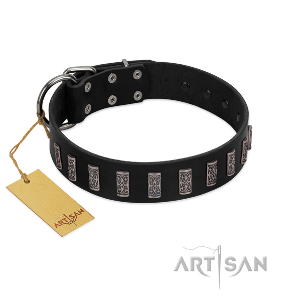 High quality leather dog collar with rust resistant D-ring