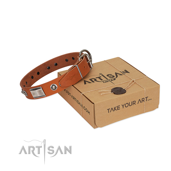 Stunning full grain natural leather collar with decorations for your four-legged friend