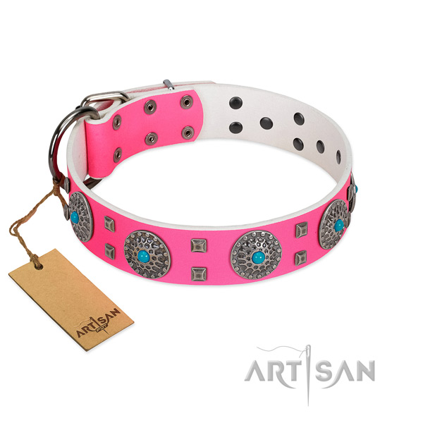 Everyday use natural leather dog collar with incredible embellishments