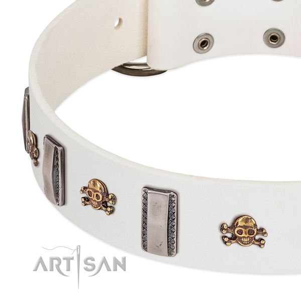 Significant embellishments on genuine leather dog collar for everyday use