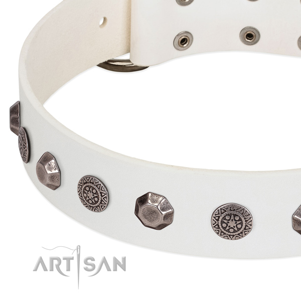 Top notch genuine leather collar for your dog walking in style