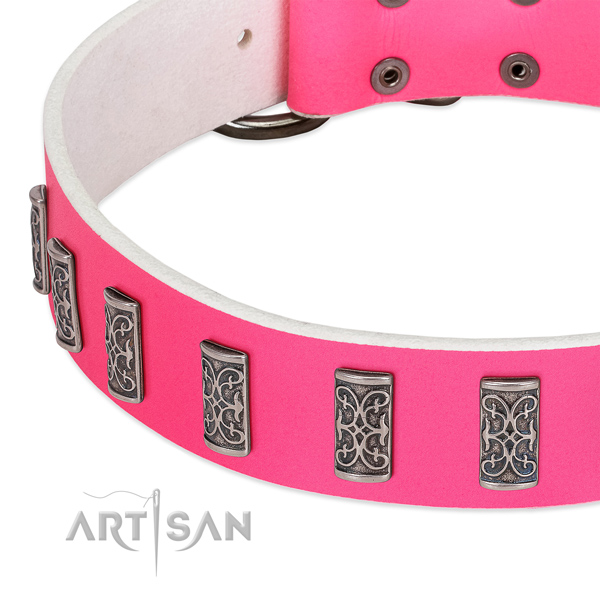 Remarkable genuine leather collar for your four-legged friend daily walking