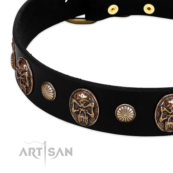Leather dog collar with amazing adornments