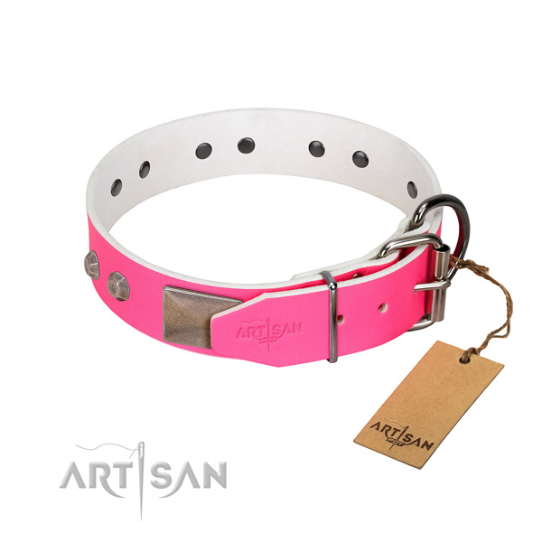 Basic training dog collar of leather with designer embellishments