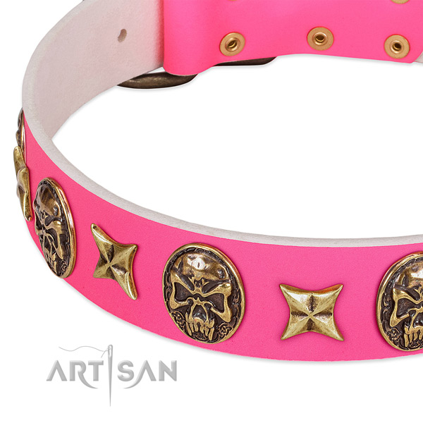 Genuine leather dog collar with stylish design adornments
