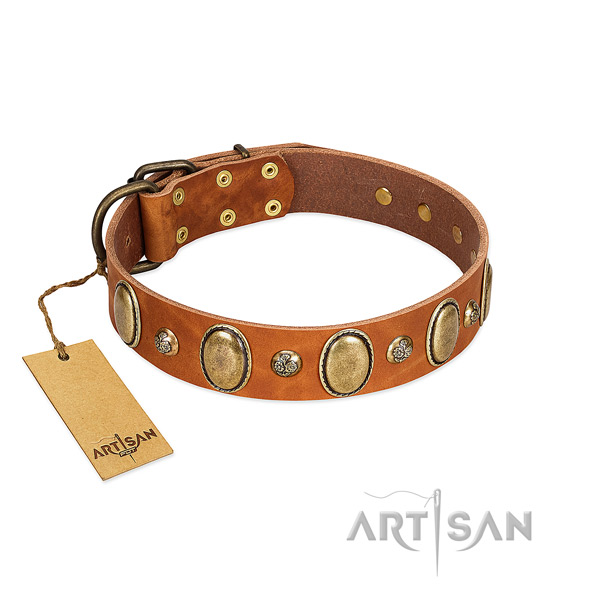 Full grain leather dog collar of soft to touch material with stylish decorations