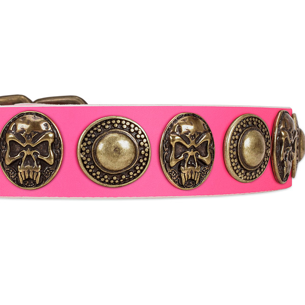 Reliable fittings on leather dog collar for your four-legged friend