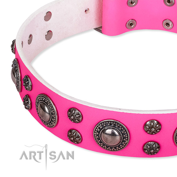 Fancy walking decorated dog collar of durable leather