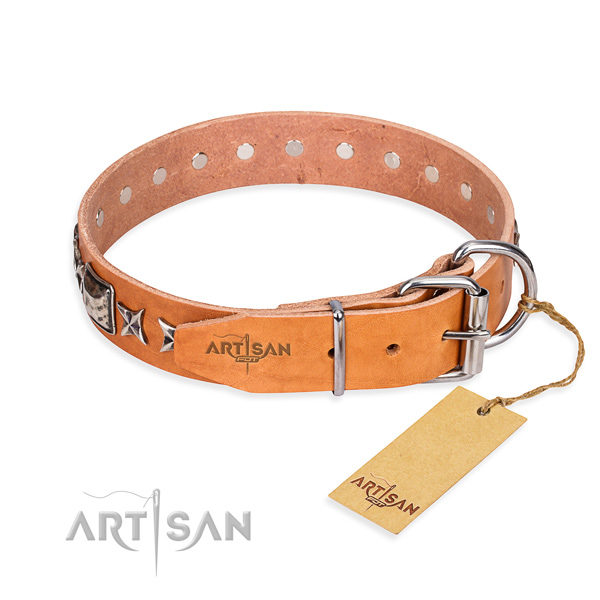 Fine quality decorated dog collar of full grain genuine leather