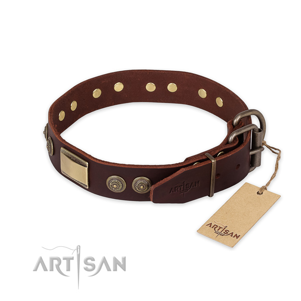 Strong traditional buckle on genuine leather collar for daily walking your pet