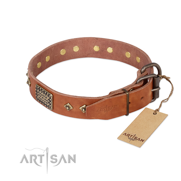 Full grain genuine leather dog collar with strong hardware and embellishments