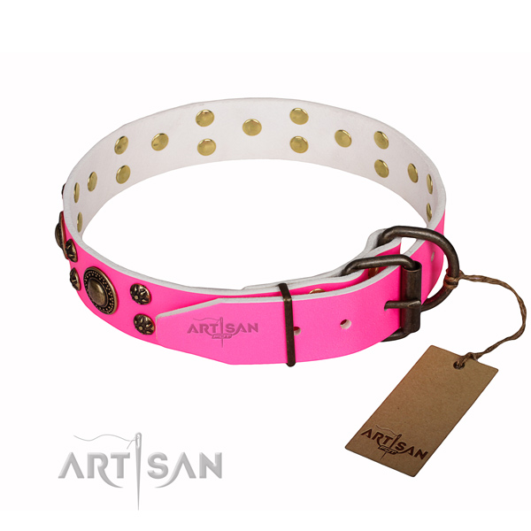 Basic training studded dog collar of top quality genuine leather