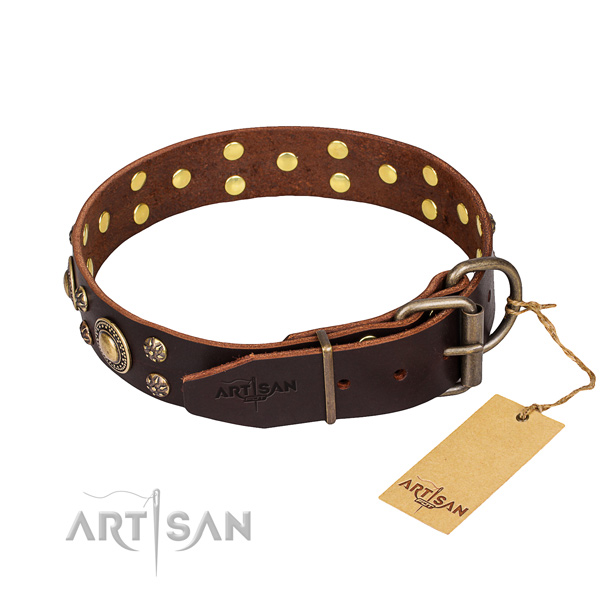 Everyday use decorated dog collar of strong leather