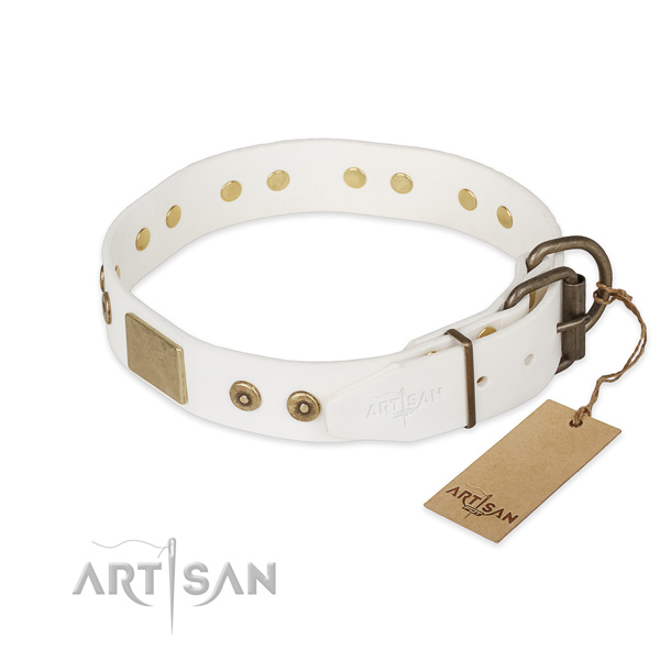 Corrosion proof fittings on full grain leather collar for basic training your dog