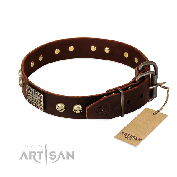 Durable traditional buckle on walking dog collar