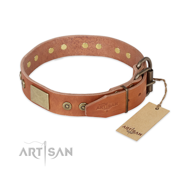 Rust resistant buckle on full grain genuine leather collar for everyday walking your canine