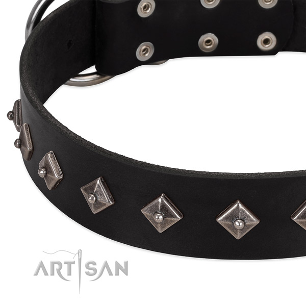 Embellished collar of leather for your handsome four-legged friend