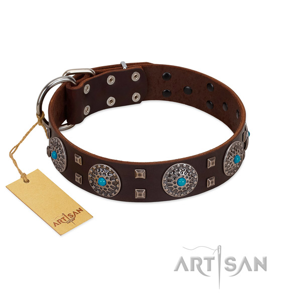 Everyday use leather dog collar with exceptional adornments