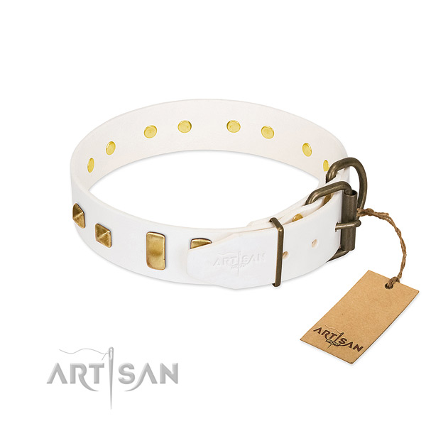 Reliable leather dog collar with corrosion resistant traditional buckle