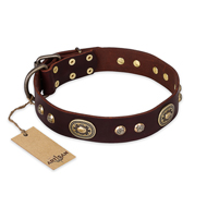 """Breath of Elegance"" FDT Artisan Decorated with Plates Brown Leather English Pointer Collar"