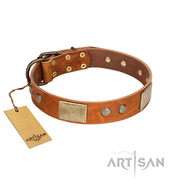 Easy adjustable full grain genuine leather dog collar for stylish walking your pet