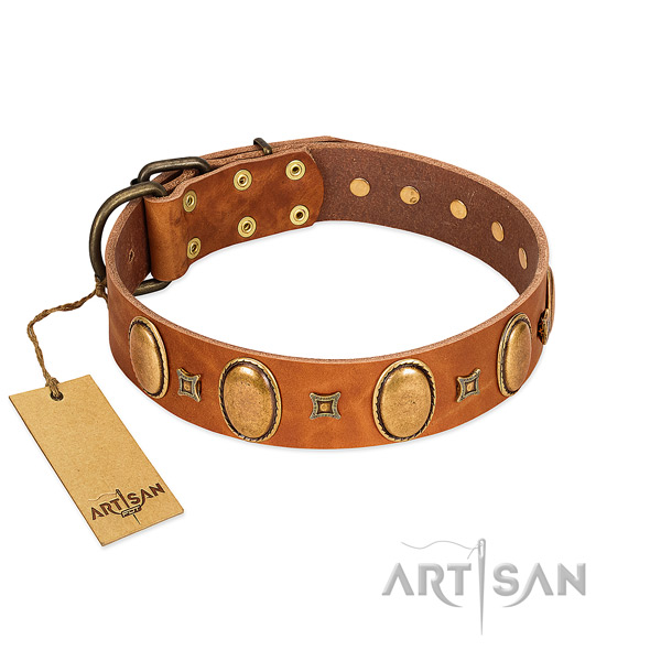 Genuine leather dog collar with extraordinary decorations for everyday walking