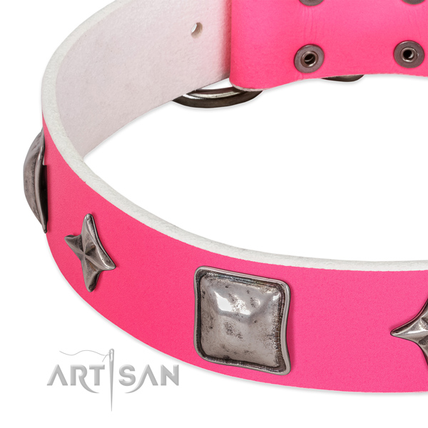 Everyday use genuine leather dog collar with exquisite adornments