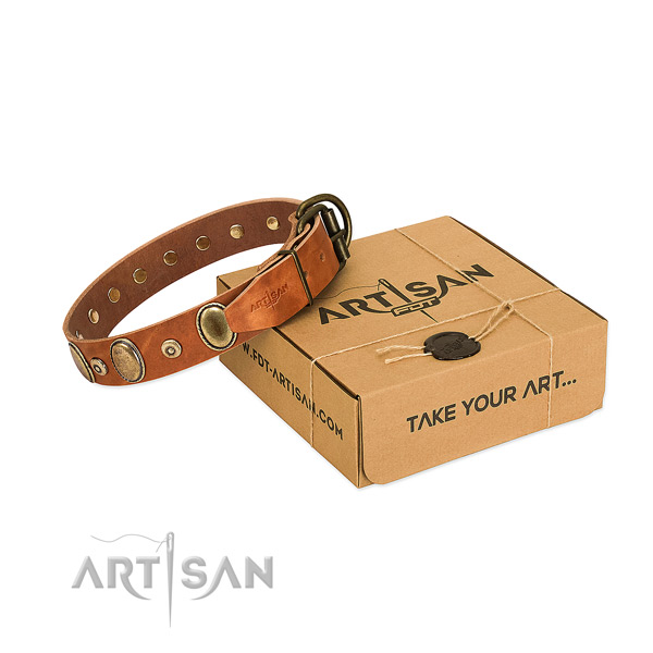 Best quality full grain natural leather collar created for your four-legged friend