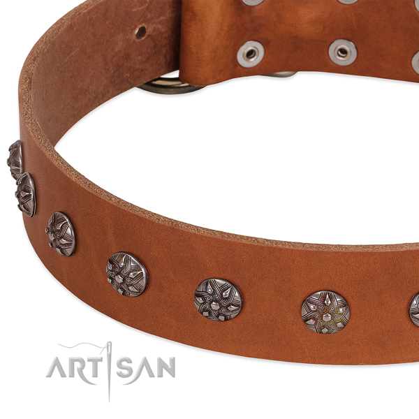 Flexible full grain leather dog collar with decorations for your doggie