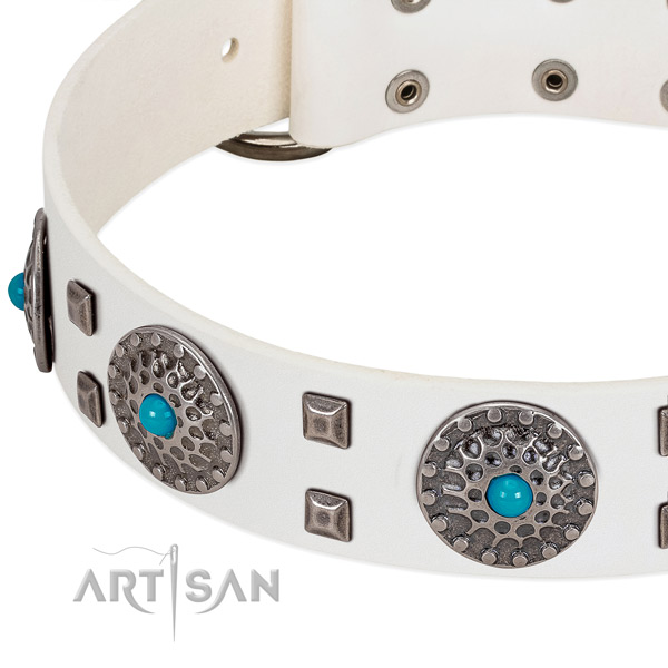 Flexible full grain natural leather dog collar with designer studs