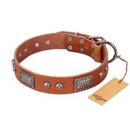 """Sparkling Skull"" FDT Artisan Tan Leather English Pointer Collar with Old Silver Look Plates and Skulls"