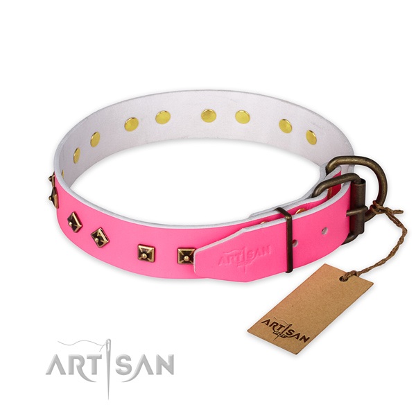 Reliable D-ring on natural leather collar for walking your four-legged friend