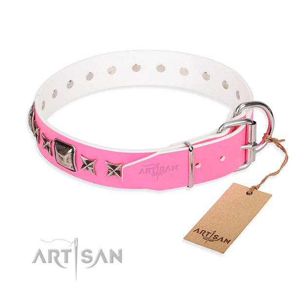 Fine quality studded dog collar of full grain leather