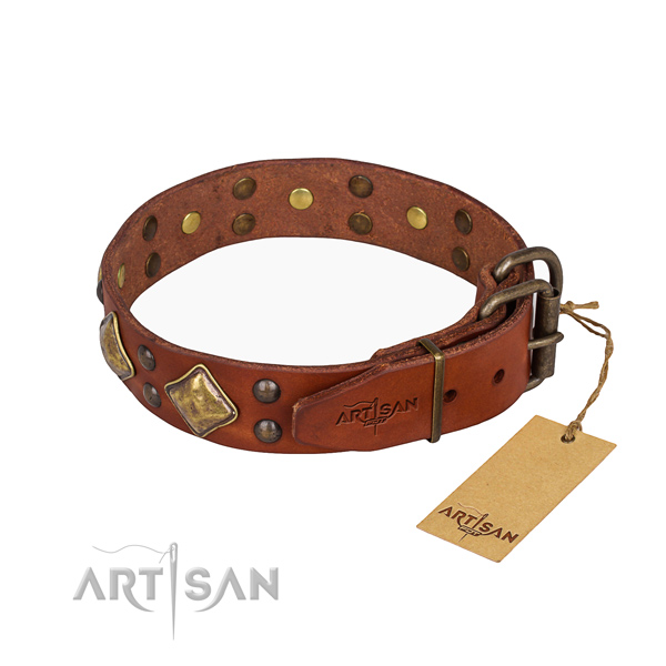 Full grain leather dog collar with unusual corrosion resistant adornments