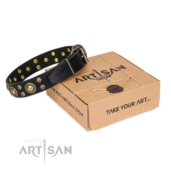Easy wearing dog collar of top notch full grain natural leather with embellishments