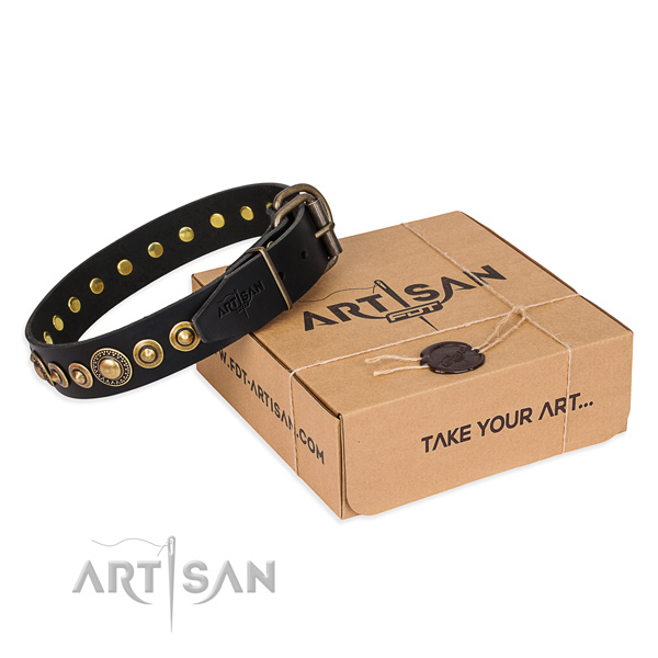 Flexible full grain leather dog collar created for walking